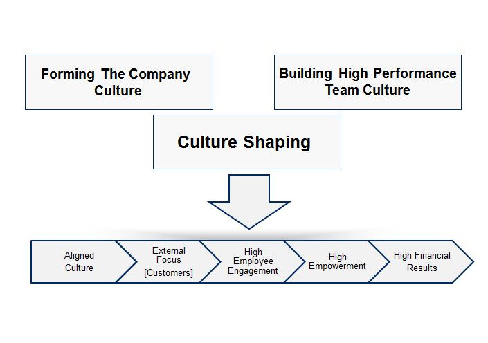 Culture Shaping 4